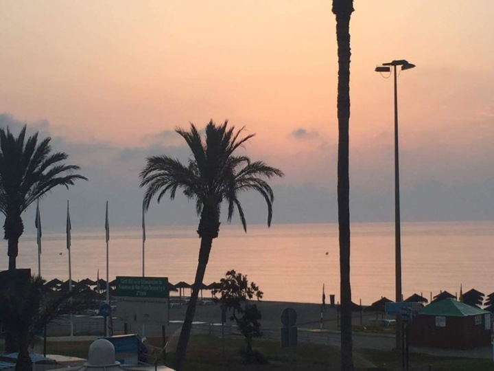 The view from our hotel - a refreshing pink and blue sunset behind palm trees.