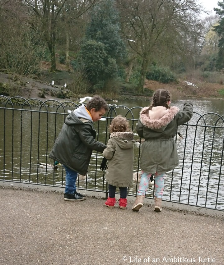 Playdate feeding ducks at the local park