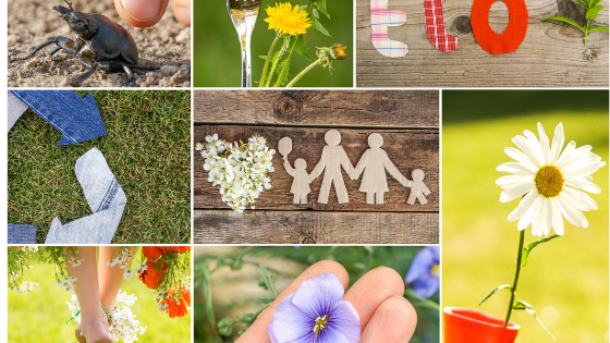 Collage of nature themed photos including a daisy up close, socks made into the recycling symbol, early morning dew and a paper cut out of a family with children in the centre